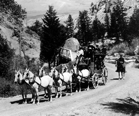 Six white horses harnessed to a stagecoach with people sitting on top and a single man on horseback standing on a road