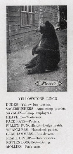 Back cover of booklet showing Yellowstone Lingo, circa 1929.
