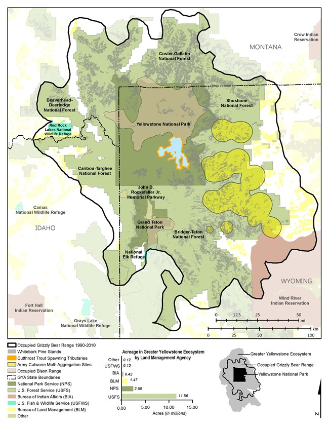 Figure 1. Distribution of four concentrated high-caloric grizzly bear foods (army cutworm moths, bison, cutthroat trout, and whitebark pine) within occupied grizzly bear range under different land management agency jurisdictions in the Greater Yellowstone