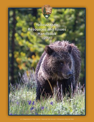 Handbook cover with a grizzly bear walking through a field or purple wildflowers