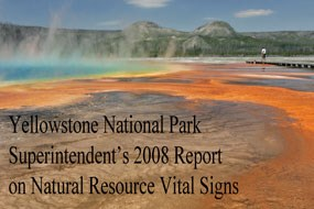 2008 Vital Signs cover with a photo of the colorful Grand Prismatic