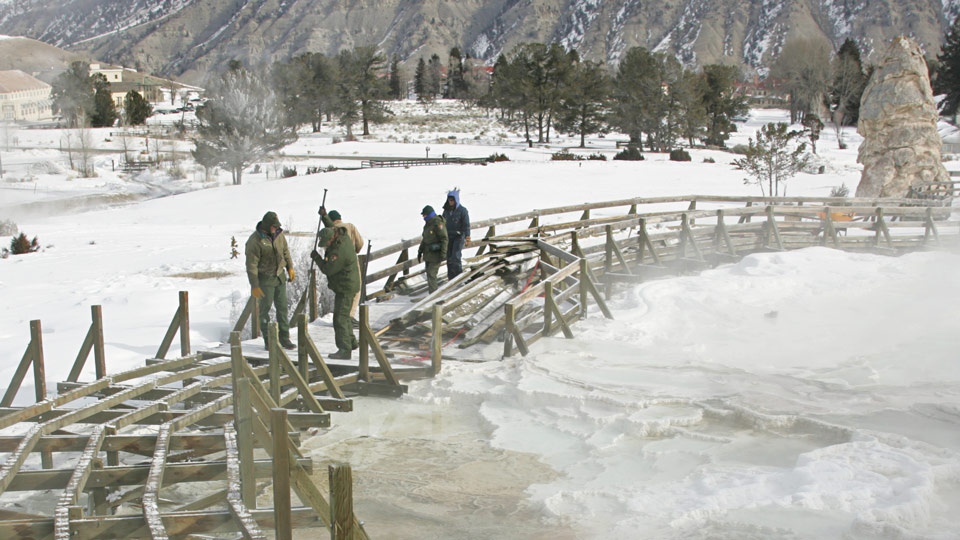 Maintenance crew working during winter to replace worn-out boardwalks