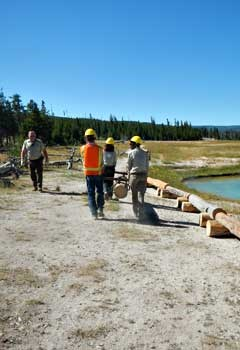 A YCC crew carrying logs for trail work.