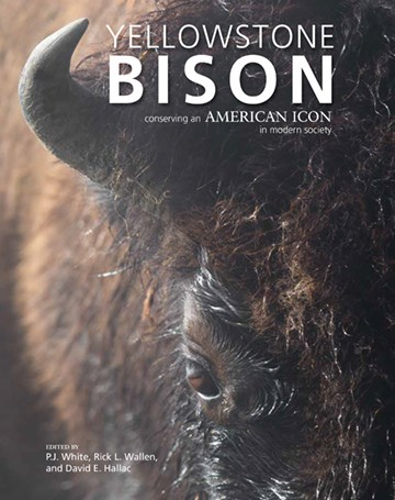 Cover of Yellowstone Bison: Conserving an American Icon in Modern Society