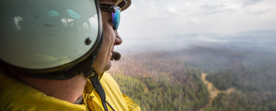Fire effects personnel monitoring the 2015 Spruce Fire