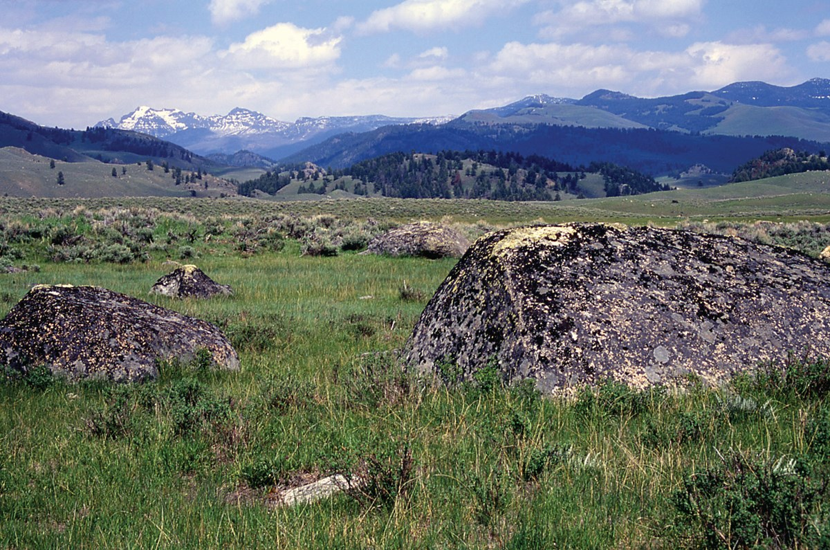 Looking out over the Northern Range at glacial erratics, ground moraines, and Cutoff Mountain in the distance.
