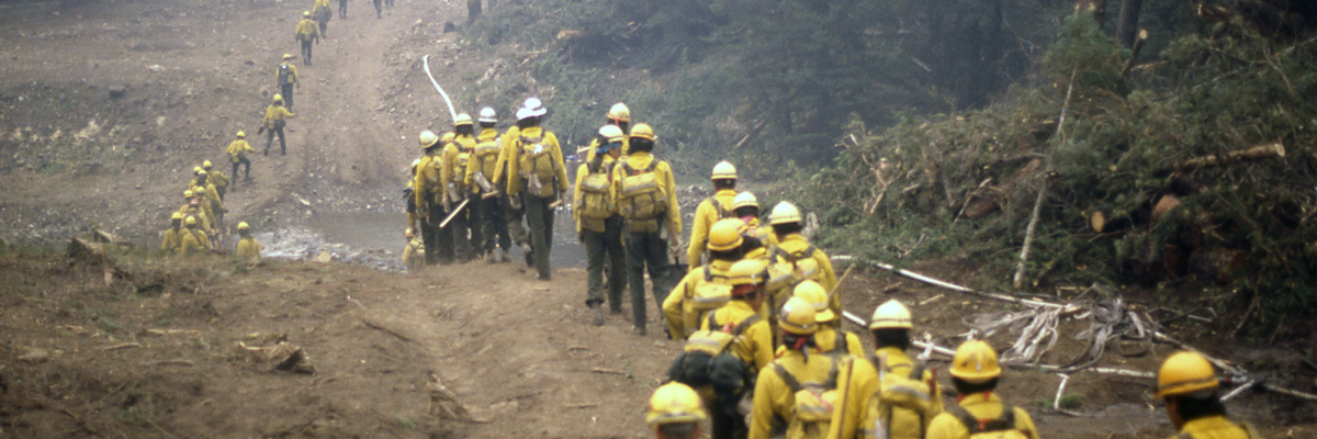 A long line of firefighters walk through a small water crossing