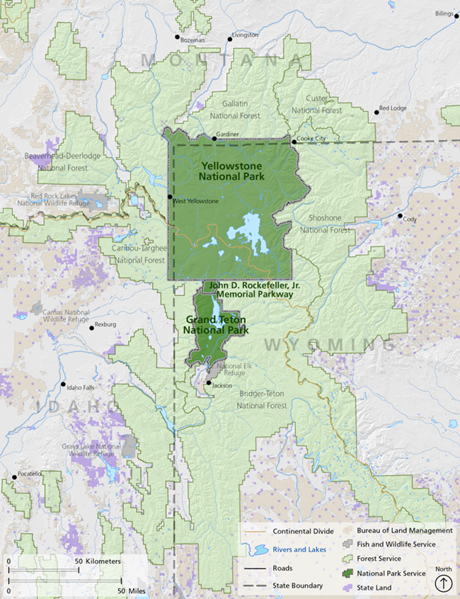 Map of Idaho, Montana, and Wyoming with public lands of the Greater Yellowstone Ecosystem in green.