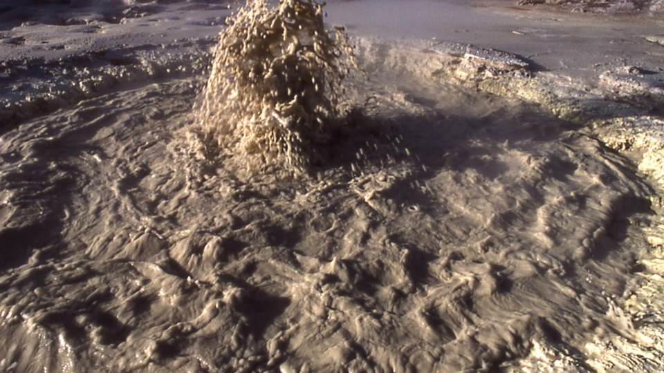 Archaea live is some of the hydrothermal features at Mud Volcano, like this boiling mudpot.