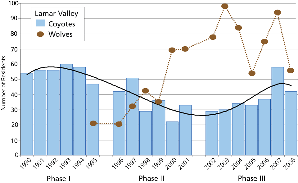 Chart showing the annual count of coyotes and wolves since 1990.
