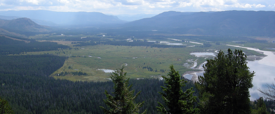 A wide view of a river delta surrounded by forested mountains