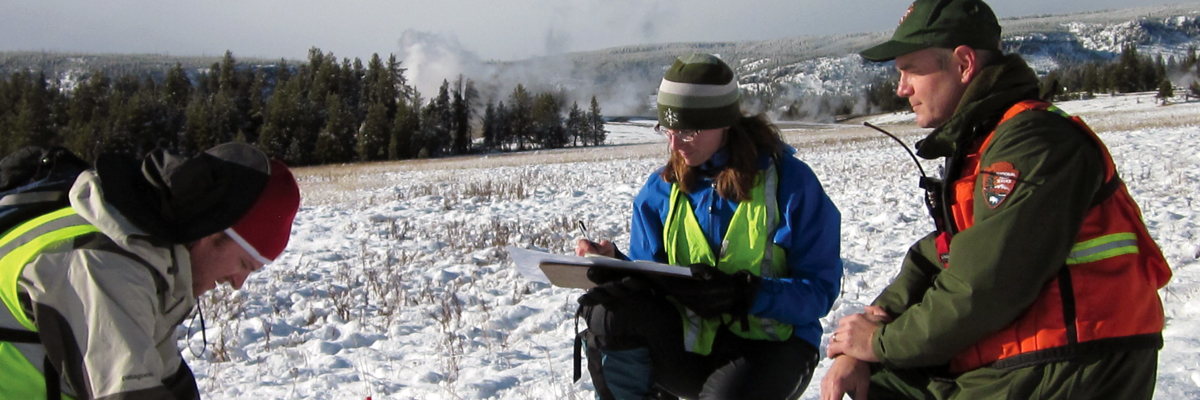 Two people in bright vests look down at the ground and notes as a park ranger looks on in a snow covered meadow