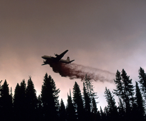 An airplane surrounded by smoke drops dusty material as it flies over a forest