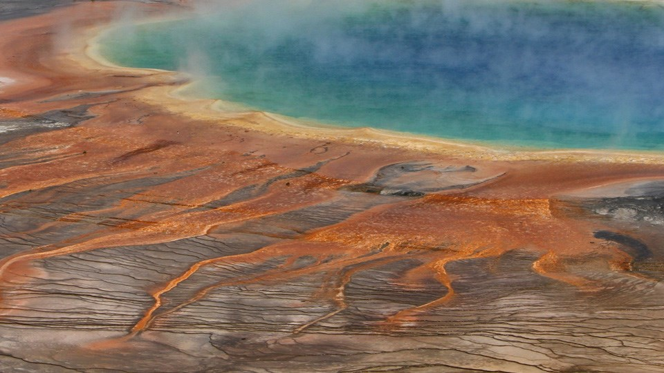 Rainbow colors of Grand Prismatic Spring are on display.