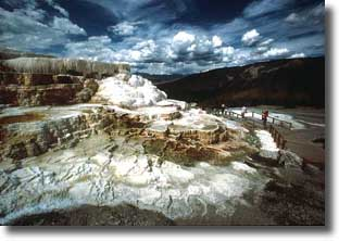Spectacular travertine terraces of limestone color the landscape at Mammoth Hot Springs.