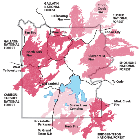 1988 Post Fire Response And Ecological Consequences Yellowstone