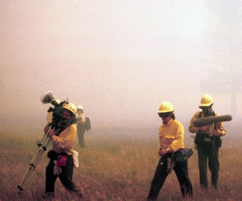 People in green pants, yellow tops, and helmets carry large audio and film equipment through a meadow filled with smoke