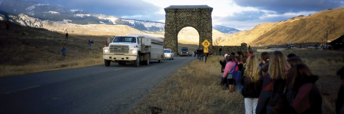 A truck and stock trailer followed pass through a stone arch
