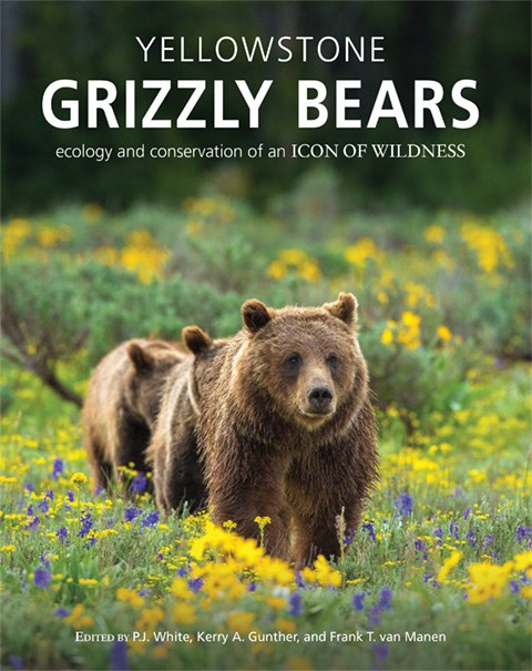 Cover of Yellowstone Grizzly Bears: Ecology and Conservation of an Icon of Wildness