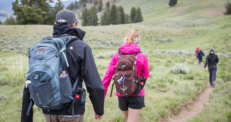 A group of five hikers carrying bear spray in Lamar Valley