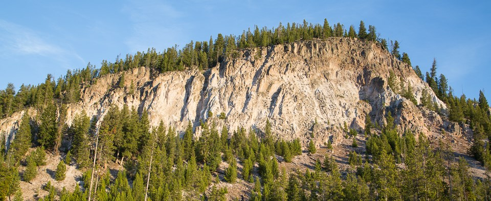 Evidence of volcanic activity can be found throughout Yellowstone. Tuff Cliff, for example, reveals an ash flow welded into rock.