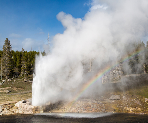 A geyser erupts from a cone of sinter next to a body of water