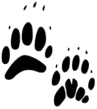 Black paw prints of a badger
