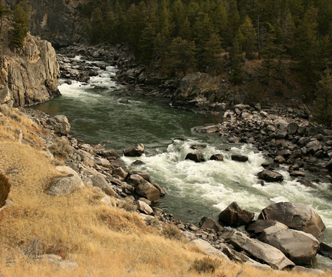 A river flows through a rocky canyon and creates white water below rocks