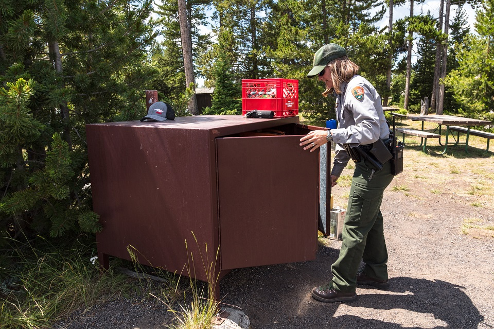 A park ranger checks a bear box for proper food storage.