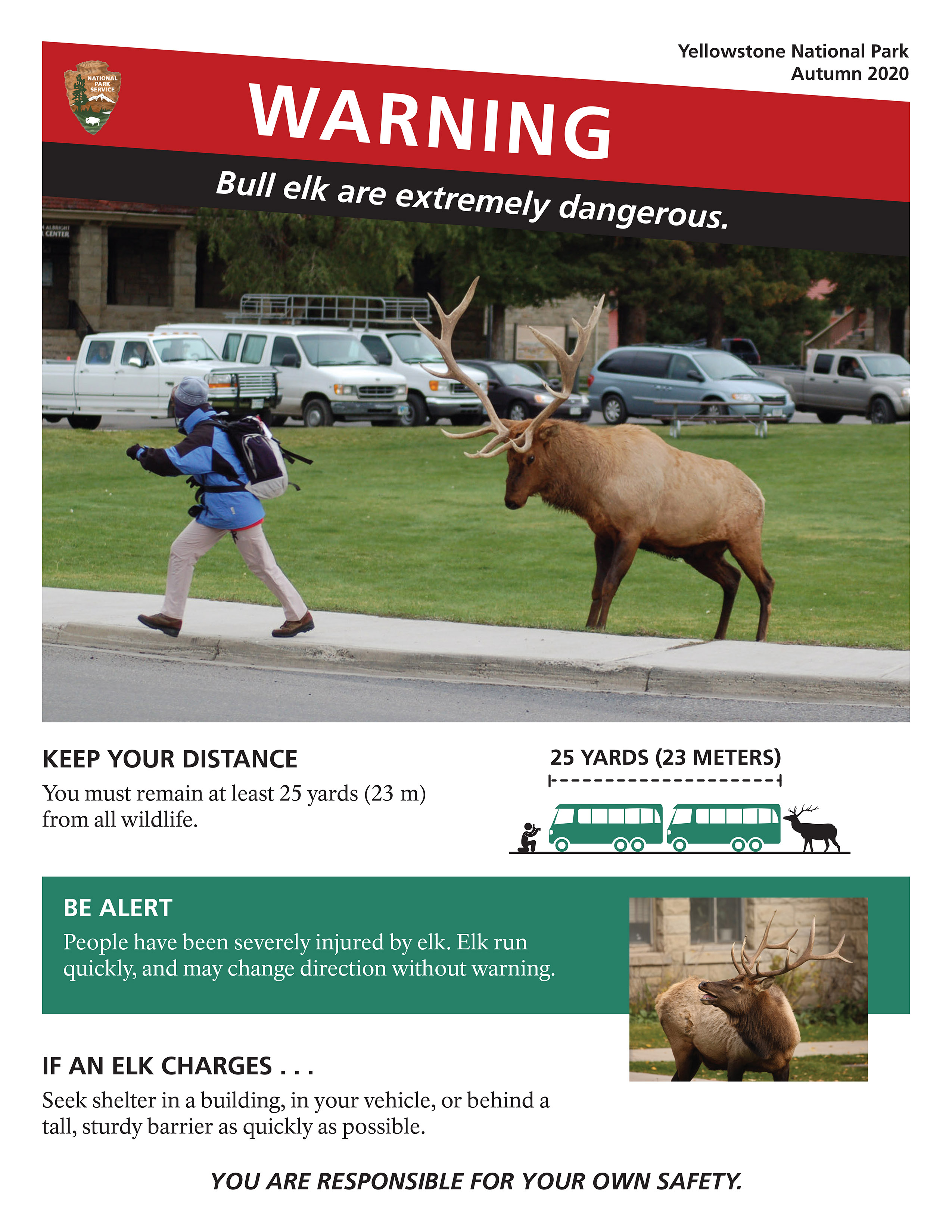 A poster visualizing how elk can chase people and the distance one should keep from elk