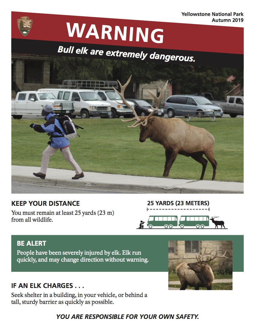 poster of person walking away from elk