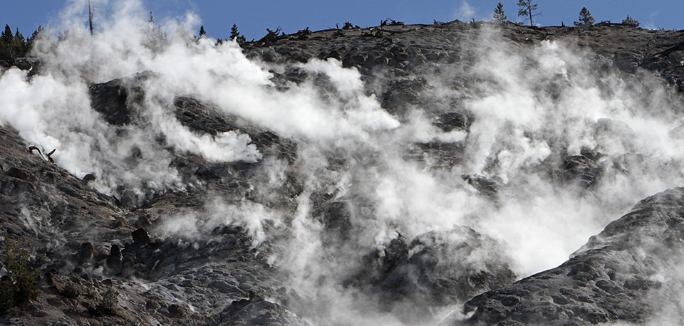 Steam rises from vents in the earth