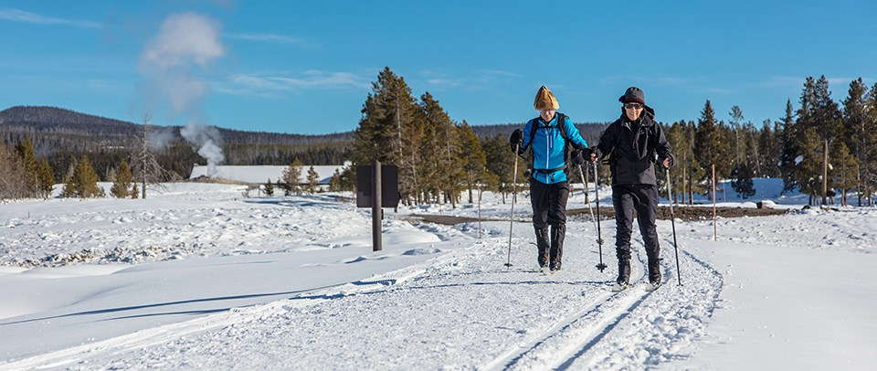 Two women nordic ski in a snowy landscape.