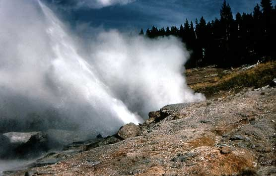 As Ledge Geyser erupts it shoots steam and water on an angle that is nearly 45 degrees.