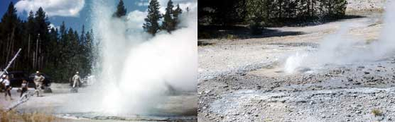 (Left) Minute Geyser in its early years when it presented delightful eruptions up to 50 feet tall. (Right) This photo showing a typical eruption today, displaying a plume of water only about 12 inches high.
