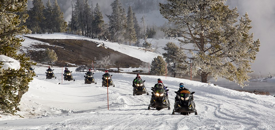 Line of snowmobiles traveling in a wintry landscape