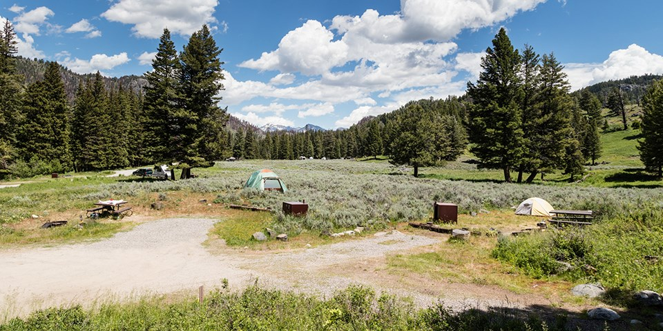 Sites in the Slough Creek Campground