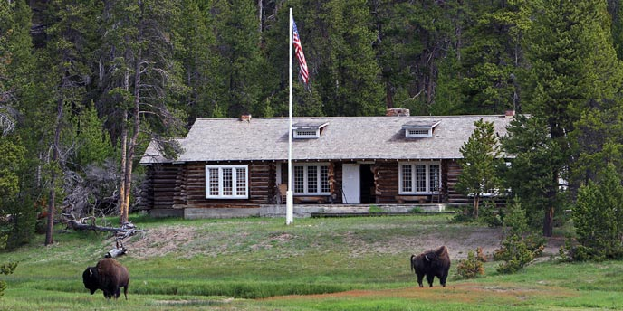 Bison graze and an American flag fly in front of log structure with windows