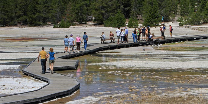 Visitors walk on a boardwalk that goes through a hydrothermal area