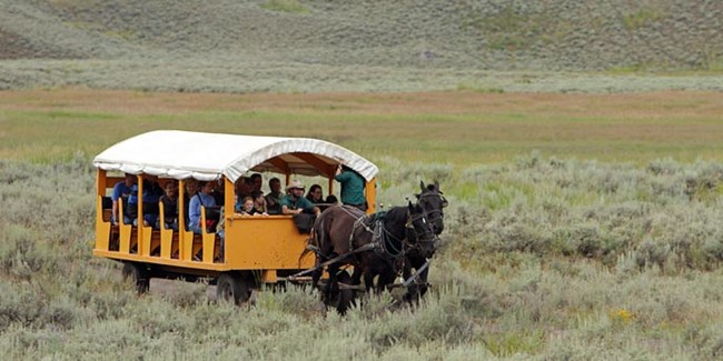 A modern stagecoach pulled by a horse moves through sagebrush