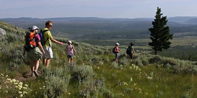 A family of two adults and three children hiking through an alpine meadow.