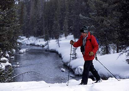 A cross country skier passes a river in YNP.