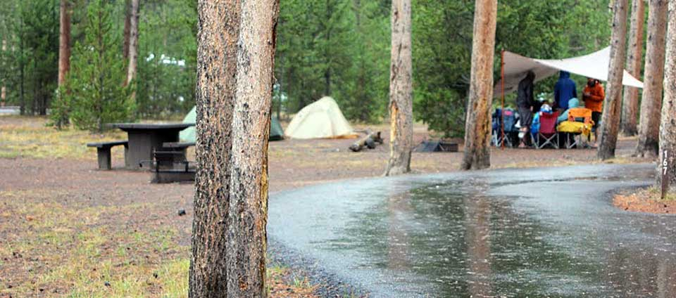 Madison Campground Yellowstone National Park U S