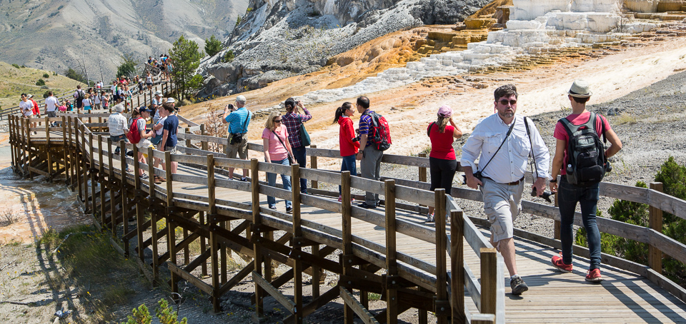 Photo of people on the boardwalks at Mammoth Hot Springs