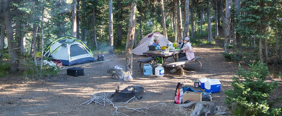 Campsite in the Lewis Lake Campground