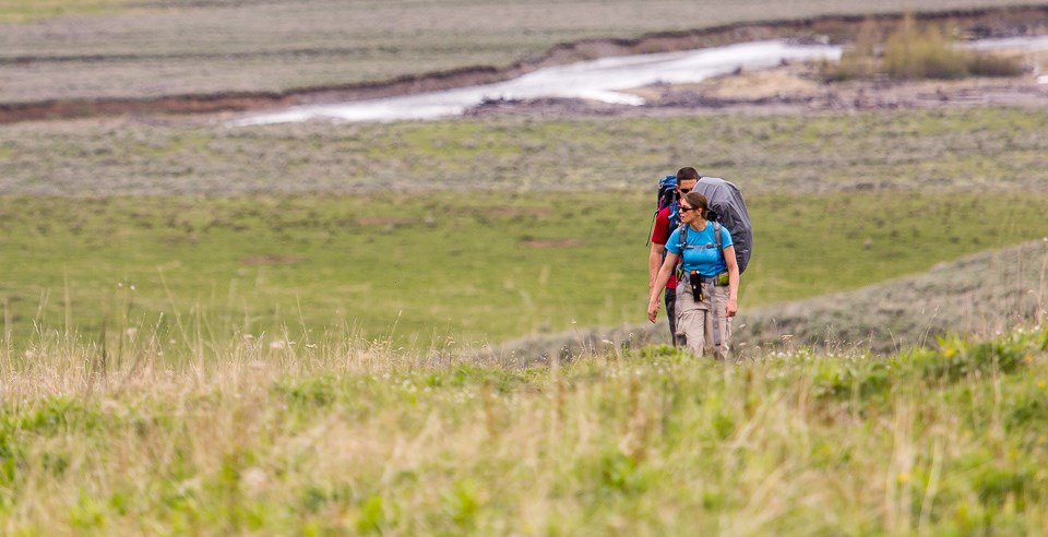Backpackers hit the trail in Lamar Valley.