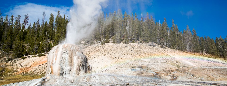 An eruption of Lone Star Geyser