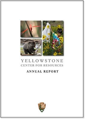 YCR Annual Report Cover