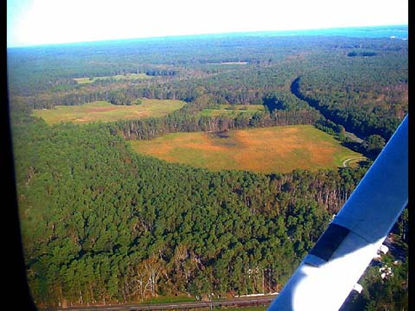 Aerial view of forest on Yorktown Battlefield