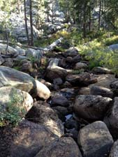 Middle Fork Tuolumne River in September